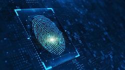 Fingerprint sensor image for AlSc webpage